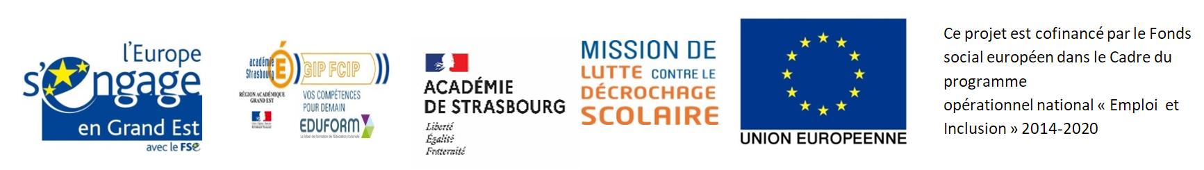 Image Logo MLDS